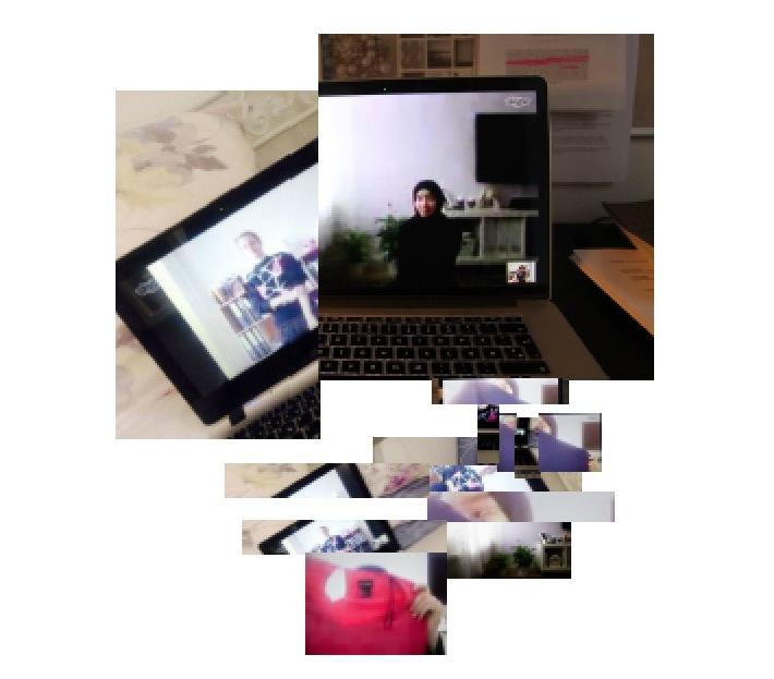phd_perspectives_laila_lene_skype.jpg
